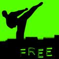 Kung Fu - Martial Arts