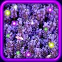 Lavender Sunrise livewallpaper
