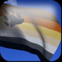Bear Brotherhood Flag