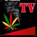 Beedi TV HD