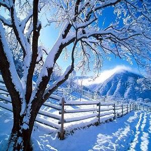 Kış manzara duvar kağıtları