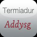Termiadur Addysg