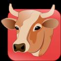 GB Carni catalogo prodotti