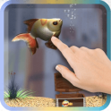 Goldfish Pet In Your Phone 3D