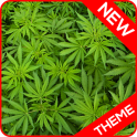 Marijuana - GO Launcher Theme