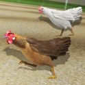 World Hen Racing Championship 2018