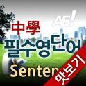 AE 중학필수영단어_Sentence_맛보기