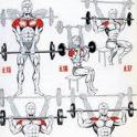 All Shoulder Exercises