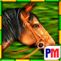 Gallop for Gold Slots