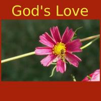 God's Love -Quotes&Meditations