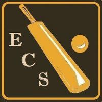 Easy Cricket Scorer