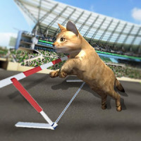 Crazy Cat Racing