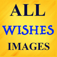 All Wishes Images 2019 - Images For WhatsApp