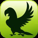 EVO BIRD