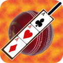 Cricket Poker Card Puzzle