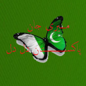 Meri Jan Pakistan Dil Dil