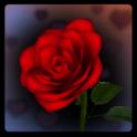 3D Rose Bouquet Live Wallpaper