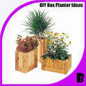 DIY Creative Box Planter