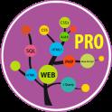Learn Web Development Pro