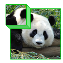 Zoo Puzzle 3D for kids