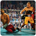 Boxing Legends 3D