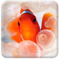 Clown Fish Live Wallpaper