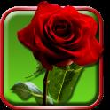 Rosas Fondo Animado