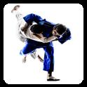 Jiu Jitsu Guide