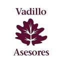 VADILLO ASESORES
