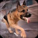 My Dog Game Simulator For Free
