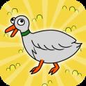 Duck Evolution Life
