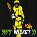 Hit Wicket Cricket 2017