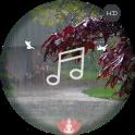 Natural Rainfall HD