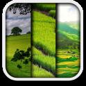 Landschaft live wallpaper