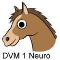 DVM 1st Yr Quiz - Neurology