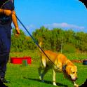 Police Dog Stunt Training