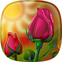 Roses Live Wallpaper  Beautiful Flower Images
