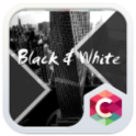 Black White Theme