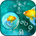HD Ocean Fish Live Wallpaper