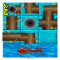 Ant Run Maze