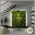 Indoor Plants Ideas