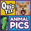 QuizTix: Animal Pics Trivia