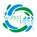 The Wash Hub