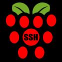 Raspberry SSH Custom Buttons