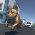 Kitty Cat Rush 3D Game