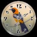 Troupial Clock Live Wallpaper