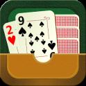 29 Card Game Plus