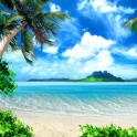Lwp 열 대 해변