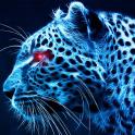 blue cheetah wallpaper