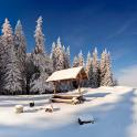 neige live wallpapers